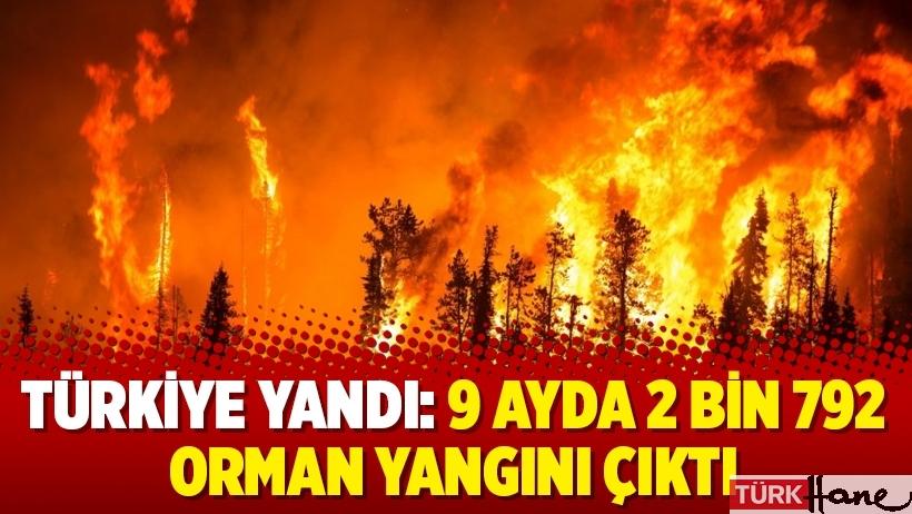 Türkiye yandı: 9 ayda 2 bin 792 orman yangını çıktı