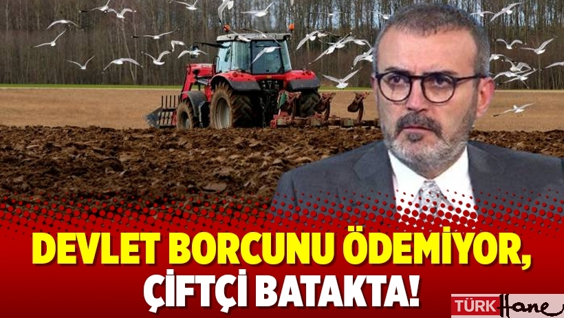 Devlet borcunu ödemiyor, çiftçi batakta!