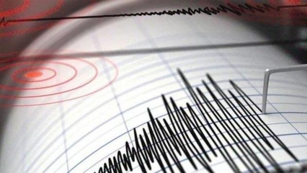 Muğla ve Van'da peş peşe depremler