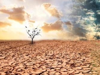 Küresel ısınmayla ilgili dikkat çeken anket