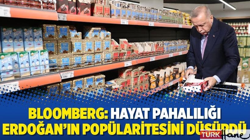 Bloomberg: Hayat pahalılığı Erdoğan'ın popülaritesini düşürdü