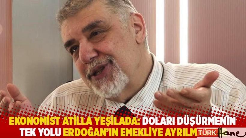 Ekonomist Atilla Yeşilada: Doları düşürmenin tek yolu Erdoğan'ın emekliye ayrılmasıdır